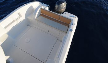 Saver 590 CABIN FISHER completo